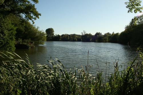 DDAPS Baldwins Lake
