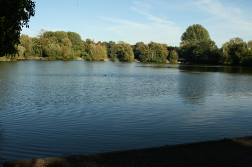 DDAPS Competition Lake